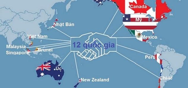 Cam kết của Việt Nam trong lĩnh vực ngân hàng tại Hiệp định Đối tác Xuyên Thái Bình Dương (và trong cả hiệp định thương mại tự do với EU) về cơ bản giống như cam kết đã có khi gia nhập WTO