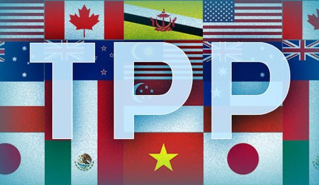 Cơ hội từ TPP không tự đến