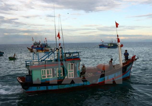 Ngành đánh bắt thủy sản hưởng lợi từ việc giảm giá dầu. (Ảnh: Huy Hùng/TTXVN)