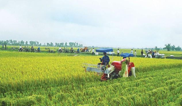 Vốn Nhật hướng mạnh vào nông nghiệp