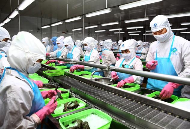 Năng suất lao động của doanh nghiệp tư nhân hiện đang rất thấp. Ảnh: Lê Tiên