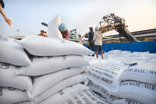 Xuất khẩu gạo, cà phê bất ngờ tăng mạnh trở lại