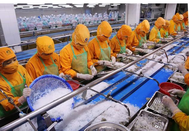 Năng suất lao động thấp là một thách thức với Việt Nam trong hội nhập. Ảnh: Tất Tiên