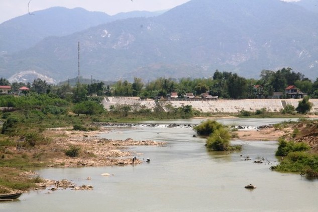 Sông Cái ở phía thượng nguồn sắp cạn trơ đáy, dẫn đến xâm nhập mặn. Ảnh: TT