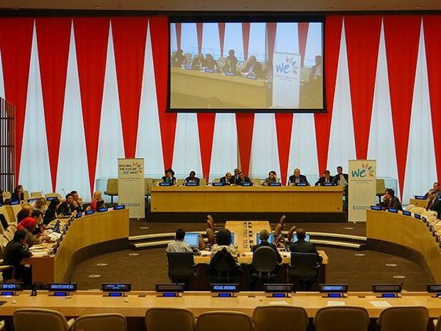 Một phiên họp của ECOSOC. (Nguồn: iisd.ca)