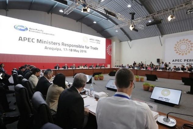 Quang cảnh Hội nghị Bộ trưởng Thương mại APEC. (Nguồn: andina.com.pe)