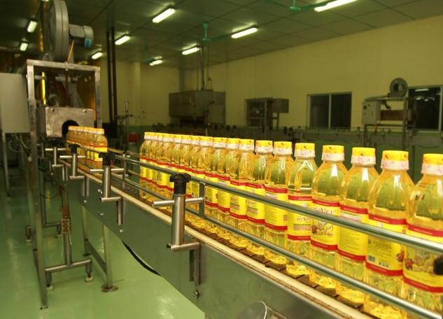 Sau 3 tháng niêm yết, SG Oil công bố kết quả kinh doanh tệ hại với lợi nhuận chỉ đạt 253 triệu đồng. Ảnh: Quang Tuấn