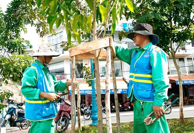 Việc bên mời thầu đưa ra tiêu chí yêu cầu nhân sự chăm sóc cây xanh chỉ dành cho kỹ sư xây dựng cầu đường là có chủ ý hạn chế sự tham gia của nhà thầu. Ảnh: Lê Tiên