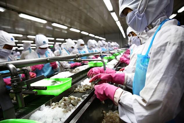 6 tháng đầu năm 2016, tăng trưởng ở khu vực nông, lâm, thủy sản âm 0,18%. Ảnh: Lê Tiên