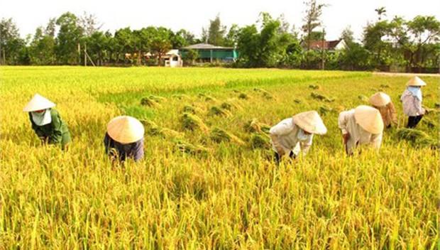 Việt Nam đăng cai Hội nghị Bộ trưởng HTX khu vực Châu Á - Thái Bình Dương lần 10