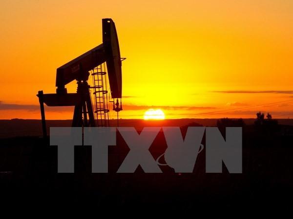 Hệ thống khai thác dầu. (Ảnh: AFP/TTXVN)