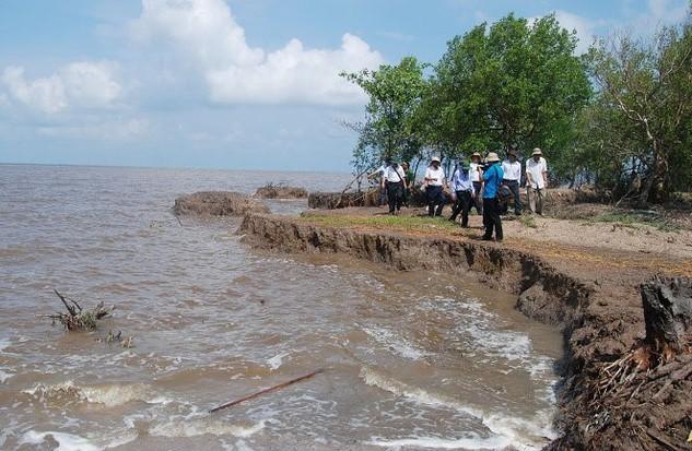 Sạt lở bờ biển do biến đổi khí hậu, nước biển dâng ở Cà Mau