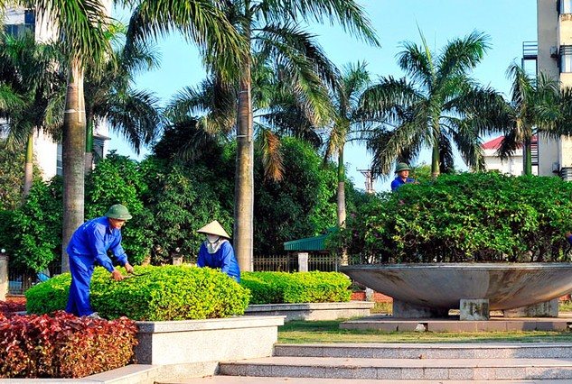 Công ty TNHH Công Minh Cây Xanh trúng 4 gói thầu tại huyện Hớn Quản, tỉnh Bình Phước với mức giảm giá chỉ xoay quanh mức 13 triệu đồng/gói. Ảnh: Tiên Giang