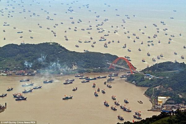 Tàu cá Trung Quốc ở Hải Nam ồ ạt kéo xuống Biển Đông đánh bắt. Ảnh:ChinaNews