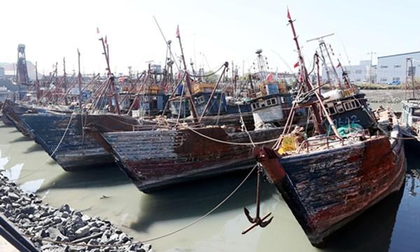 Tàu cá Trung Quốc đánh cá trái phép bị tuần duyên Hàn Quốc bắt neo tại cảng ở Incheon, Hàn Quốc, ngày 10/10. Ảnh: Reuters.