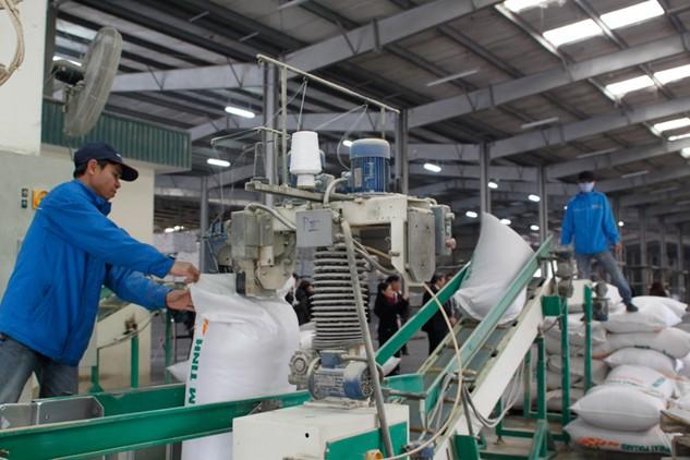 Doanh nghiệp nhỏ gặp khó khăn về vốn để đầu tư phát triển sản xuất. Ảnh: Lê Tiên
