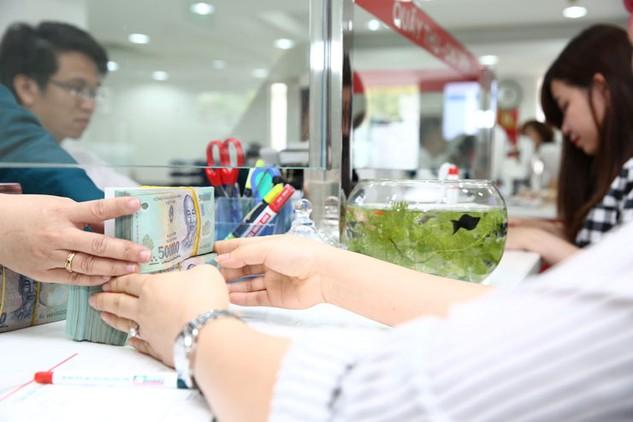Đã có 8 ngân hàng thương mại cam kết cho các doanh nghiệp nông nghiệp vay hơn 5.620 tỷ đồng. Ảnh: Lê Tiên