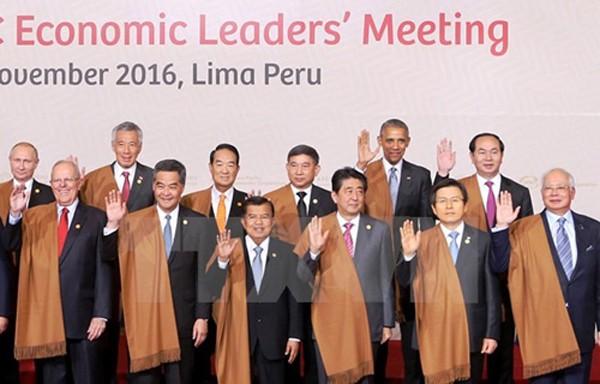Chủ tịch nước Trần Đại Quang, ngoài cùng, hàng sau, cùng lãnh đạo các nước tại APEC 26 tại Peru. Ảnh:TTXVN