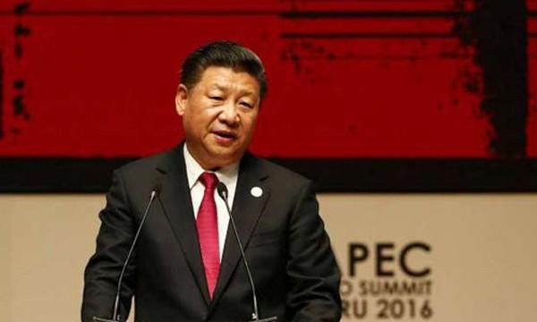Chủ tịch Trung Quốc Tập Cận Bình dự APEC tại Peru. Ảnh:Reuters