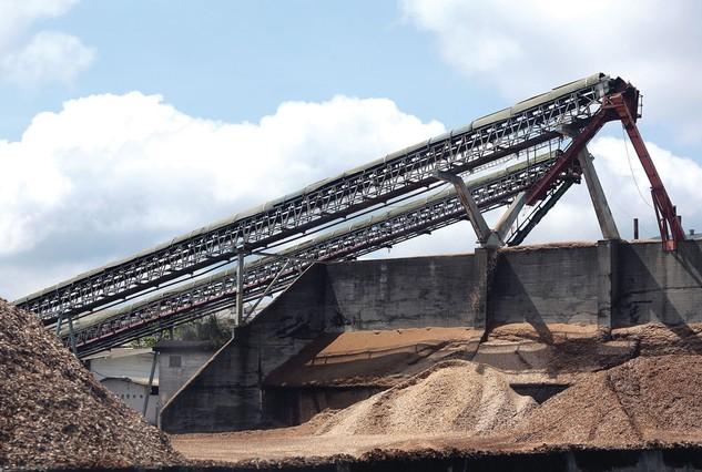 Nhà máy Bột giấy Phương Nam dự kiến được đấu giá với giá khởi điểm hơn 1.885 tỷ đồng. Ảnh: Minh Yến