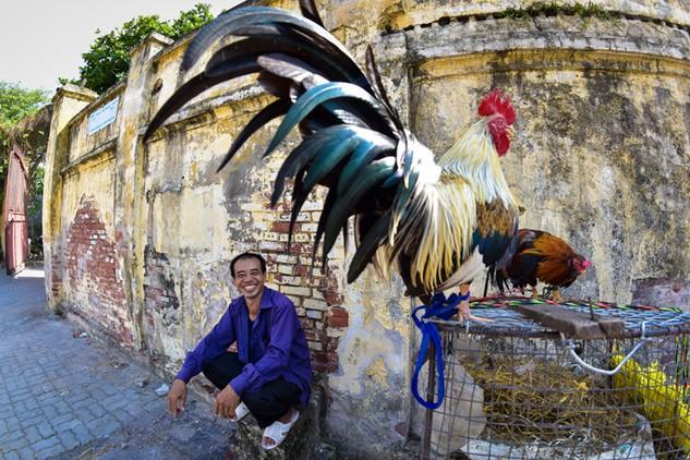 Gà trong đời sống người Việt