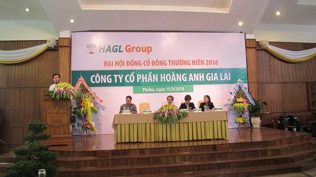Ông Võ Trường Sơn - Tổng giám đốc HAGL đọc tờ trình tại ĐHCĐ. Ảnh: Đan Nguyên
