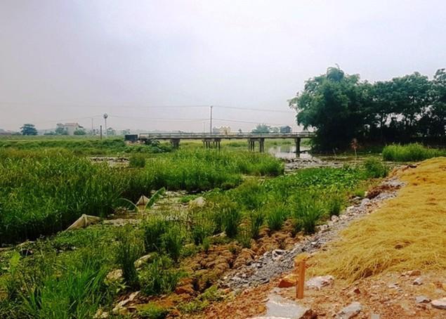 Chuyện lạ ở Thanh Hóa: Chính quyền bán đất ở... dưới lòng sông - ảnh 2