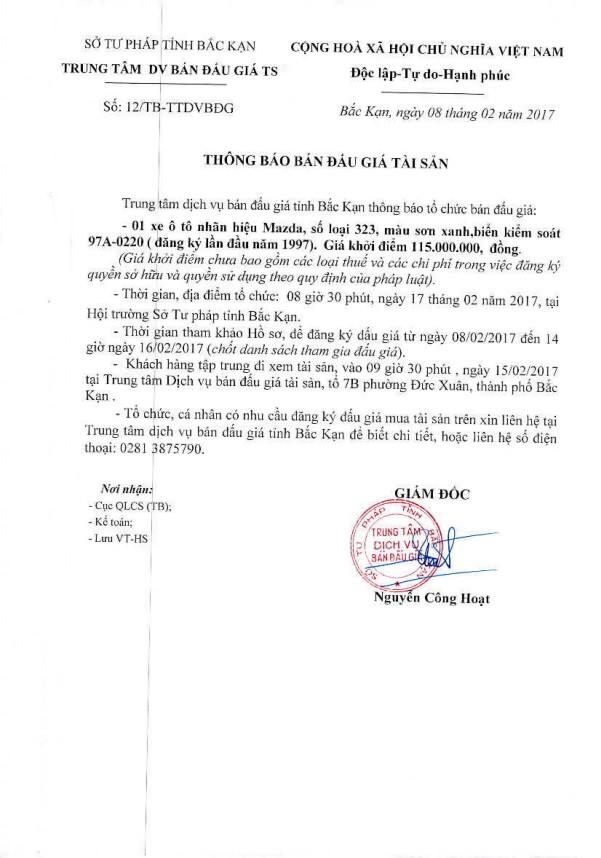 Đấu giá xe ô tô dã qua sử dụng tại tỉnh Bắc Kạn - ảnh 1