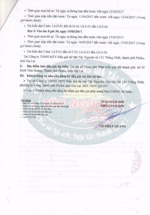 Đấu giá quyền sử dụng đất tại tỉnh Gia Lai - ảnh 2