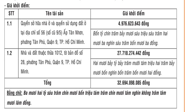 Đấu giá quyền sở hữu nhà và quyền sử dụng đất tại Quận 9, TP.HCM - ảnh 3