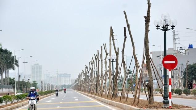 """Tuyến đường """"dát kim cương"""": 3,5km đổi gần 70ha đất ở Hà Nội sắp thông xe - ảnh 7"""
