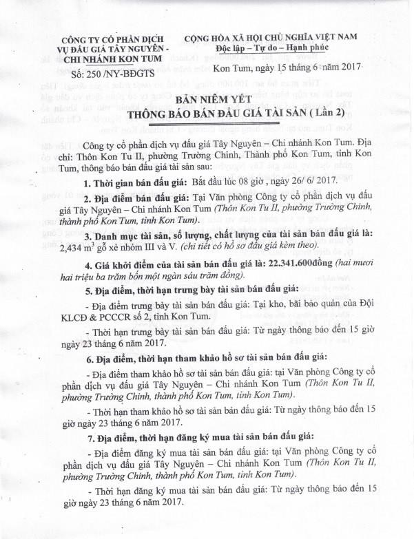 Đấu giá gỗ xẻ nhóm III và V tại TP Kon Tum, Kon Tum - ảnh 1