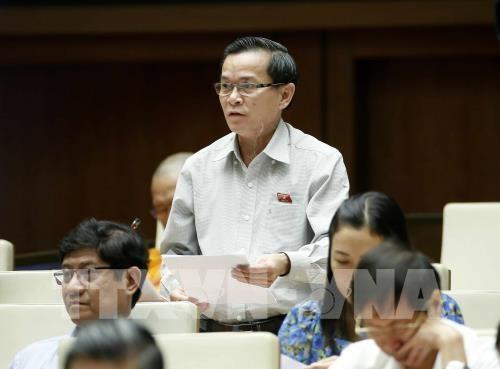 Kỳ họp thứ 3, Quốc hội khóa XIV: Hoàn thiện cơ sở pháp lý về bảo vệ và phát triển rừng - ảnh 1