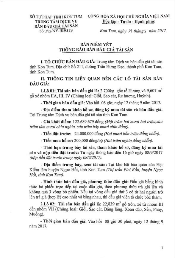 Đấu giá gỗ xẻ nhóm IIa, III, IV tại TP.Kon Tum, Kon Tum - ảnh 1