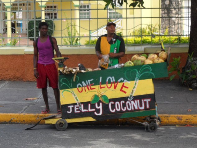 <b>7. Jamaica<br> </b><br> 11,9% doanh số trưởng thành của Jamaica tự kinh doanh, trong đó nhiều người là những người bán hàng rong. Chính phủ Jamaica đã đẩy mạnh việc khuyến khích các ý tưởng kinh doanh trong lĩnh vực công nghệ.