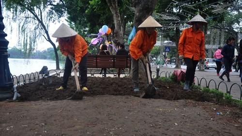 Nhân viên Công ty Thảo viên xanh Udic trồng lại hoa - Ảnh: Thúy Hằng
