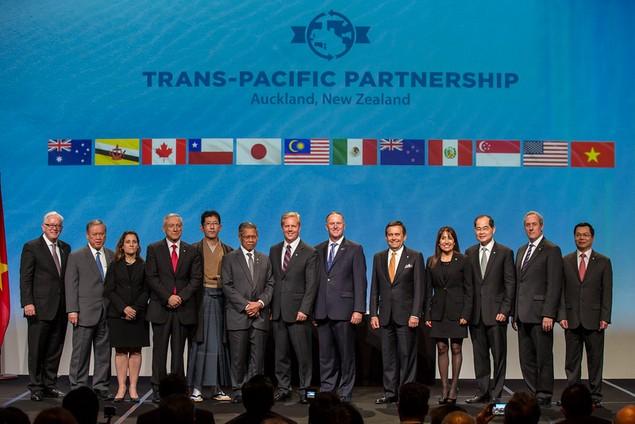 Hiệp định TPP chính thức được ký kết - ảnh 6