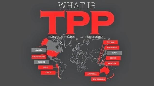Doanh nghiệp Việt Nam sẵn sàng tâm thế hội nhập với TPP - ảnh 1