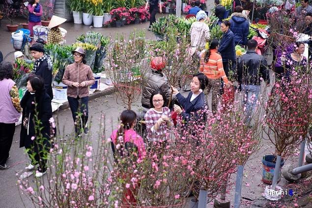 Rực rỡ phiên chợ Hà Nội cuối năm - ảnh 1