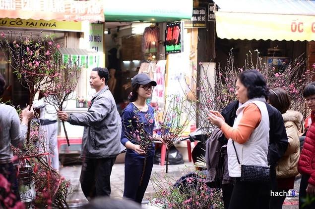Rực rỡ phiên chợ Hà Nội cuối năm - ảnh 5