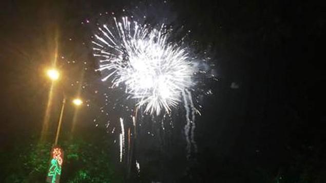 """Pháo """"nở hoa"""" trên bầu trời chào năm mới Bính Thân - ảnh 40"""