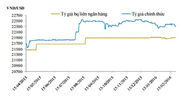 Tỷ giá sẽ tạm thời ổn định trong một vài tuần tới - ảnh 1