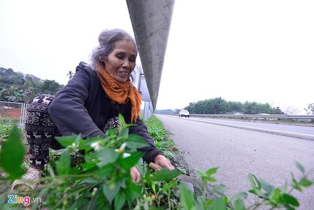 Nguy cơ tai nạn 'rình rập' trên cao tốc Nội Bài - Lào Cai - ảnh 3