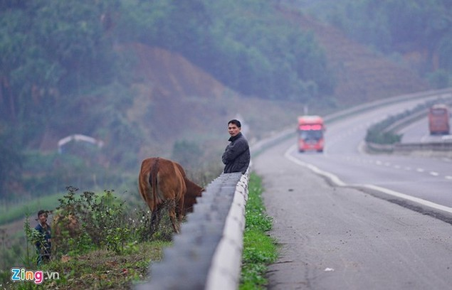 Nguy cơ tai nạn 'rình rập' trên cao tốc Nội Bài - Lào Cai - ảnh 4