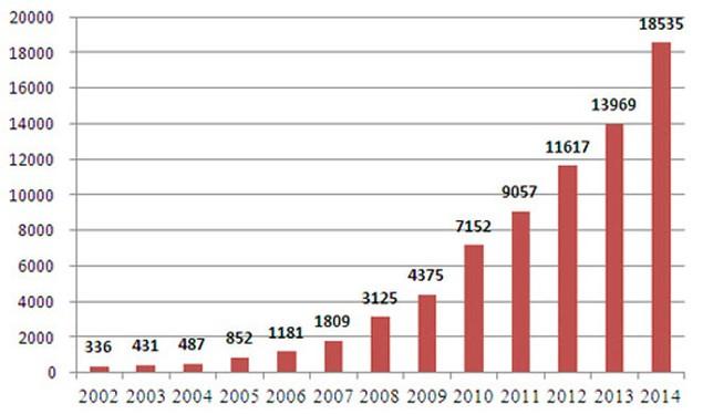 Doanh thu Big C Việt Nam tăng 55 lần sau 13 năm - ảnh 1