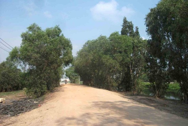 Cận cảnh sụt lún nghiêm trọng tại dự án tái định cư đồ sộ nhất TPHCM - ảnh 2