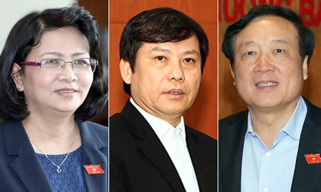Bà Đặng Thị Ngọc Thịnh trúng cử Phó chủ tịch nước - ảnh 1
