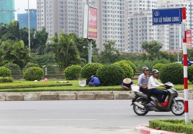 Cận cảnh đại lộ có chi phí cắt cỏ khiến 'nhiều người giật mình' - ảnh 3