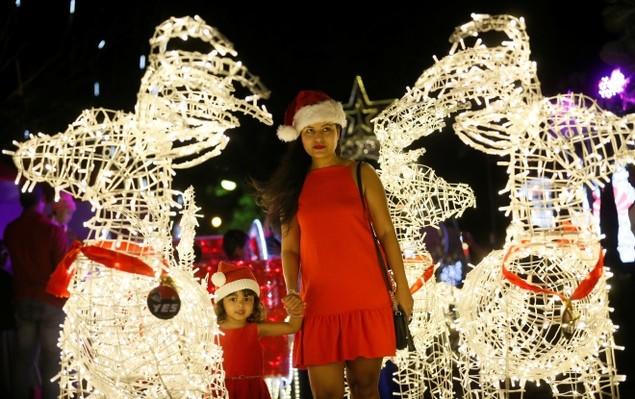 Thế giới lung linh đón Giáng sinh - ảnh 3