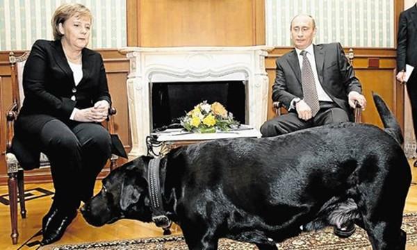 Kịch bản lần chạm mặt đầu tiên giữa Trump và Putin - ảnh 2